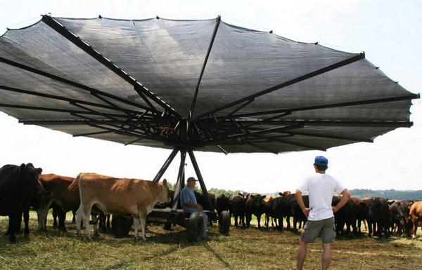 Shade Haven Portable Shade for Cattle