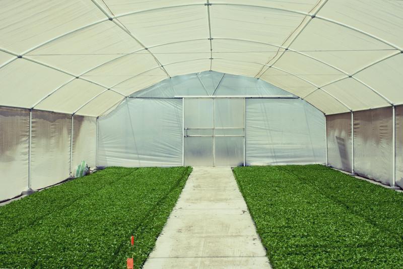 Резултат с изображение за greenhouse