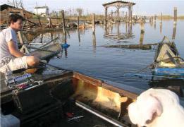 After Huricane Katrina