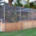 Flight Cage for Rehabilitating Wild Birds