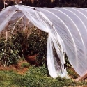 PVC Hoophouse (Greenhouse)