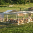 PVC Turkey/Chicken Pen